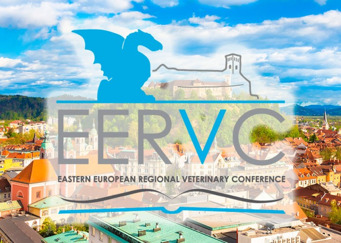 EERVC Conference 2022