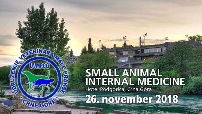 Small Animal International Medicine