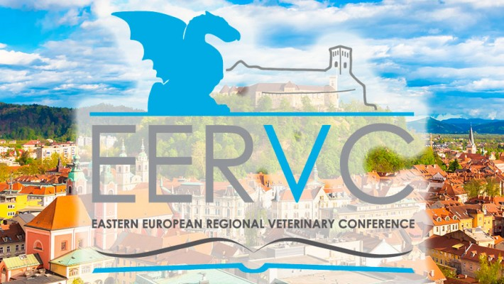 The EERVC Conference 2020