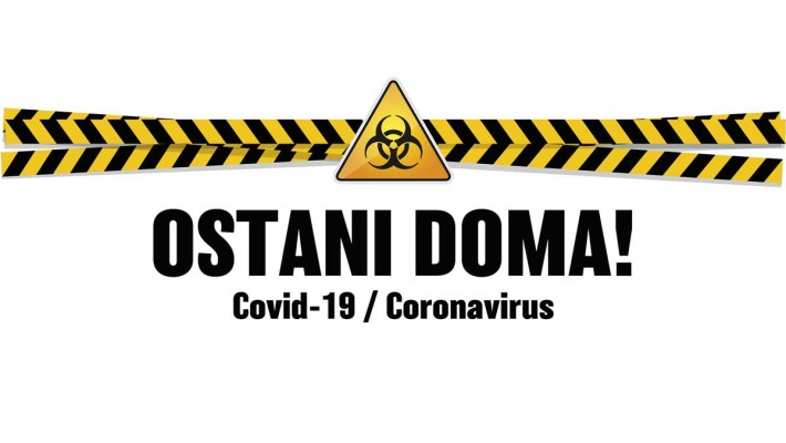 Nasveti lastnikom psov in mačk ter veterinarjem v času izbruha COVID-19
