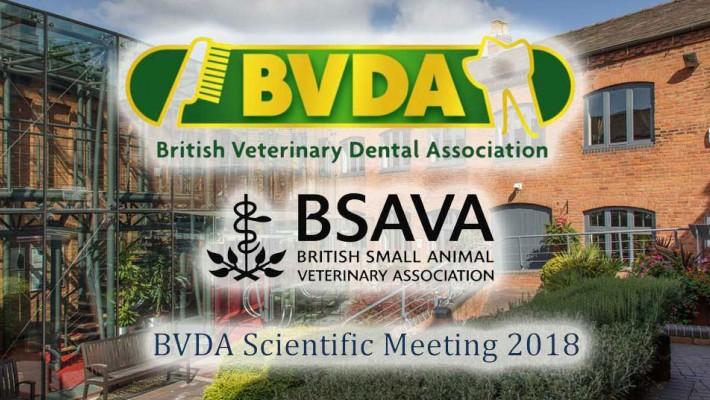 Letno znanstveno srečanje BVDA 2018